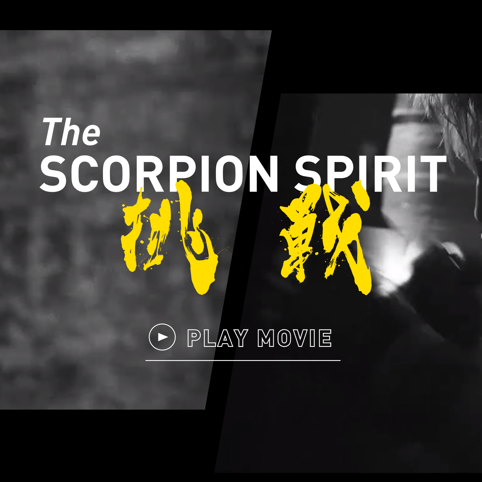 """""""The Scorpion Spirit"""" – Movie Series and Digital-featured-image"""